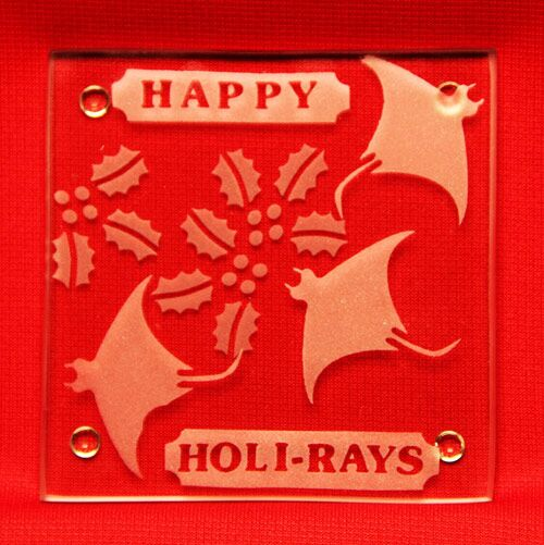 'Tis the SEAson-Happy Holi-Rays!