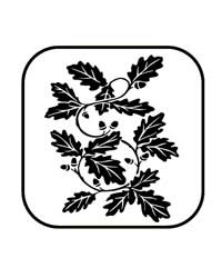 22-0805 - PNE - Oak Branch